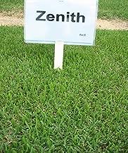 Zenith Zoysia (Zoysia Zenith) grass seeds-1/8 lb