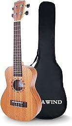 Best ukuleles for beginners