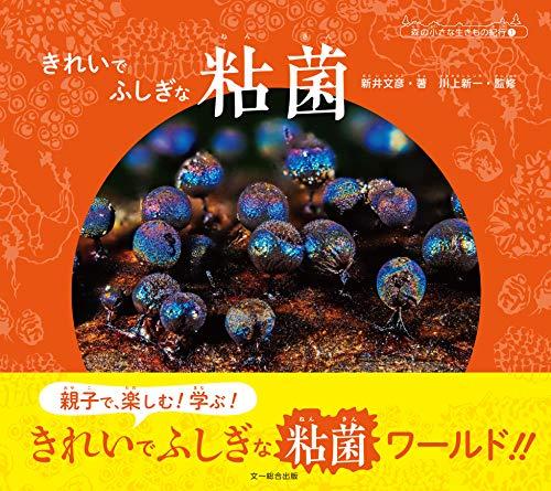 きれいで ふしぎな 粘菌 (森の小さな生きもの紀行1)