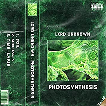 'Photosynthesis'