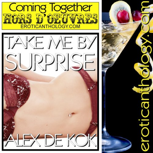 Take Me By Surprise audiobook cover art
