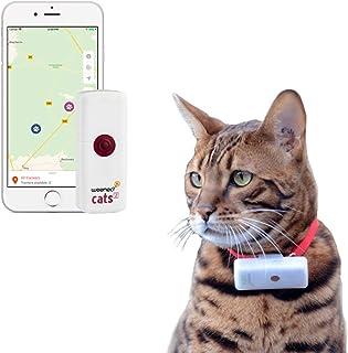 Weenect Cats 2 – Le plus petit collier GPS pour chat au monde