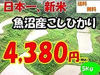 平成28年新潟県産特定産地米 (魚沼産5㎏)