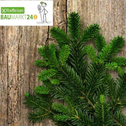 Tannengrün Tannenzweige-Schnittgrün vers. Größen | Nordmann frisch (5000, Gramm)