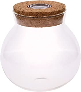 WXLAA 11cm Round Glass Jar Terrarium with Colorful LED Light Cork
