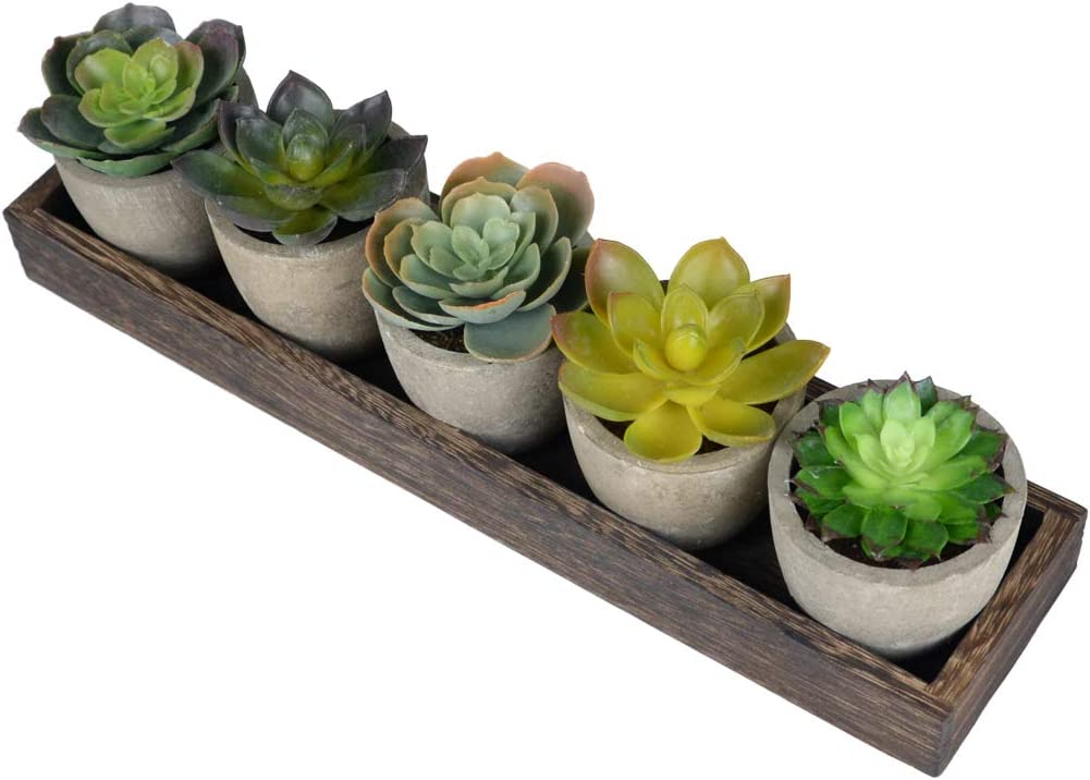 Realistic Succulent Plants Potted Artificial Plants Greenery in Pots Indoor Fake Plant Centerpiece for Dining Coffee Table Farmhouse Living Room Home/Office Decor(Set of 5 Mini Plants )