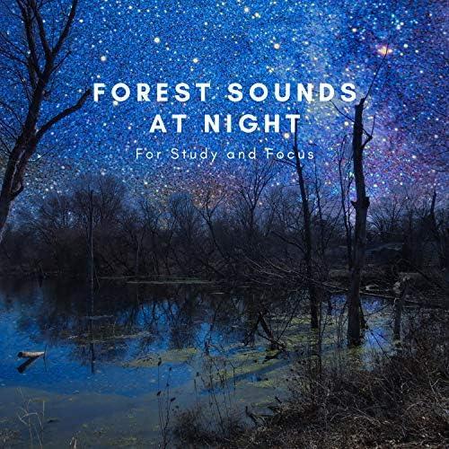 Natural Sounds Selections, Nature Sound Collection & Zen Sounds