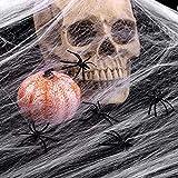 100g Halloween Dekoration Spinnennetz, 100g Dehnbaren Spinnennetzen und 100 Schwarzen Horrorspinnen Für Halloween Party Props - 4
