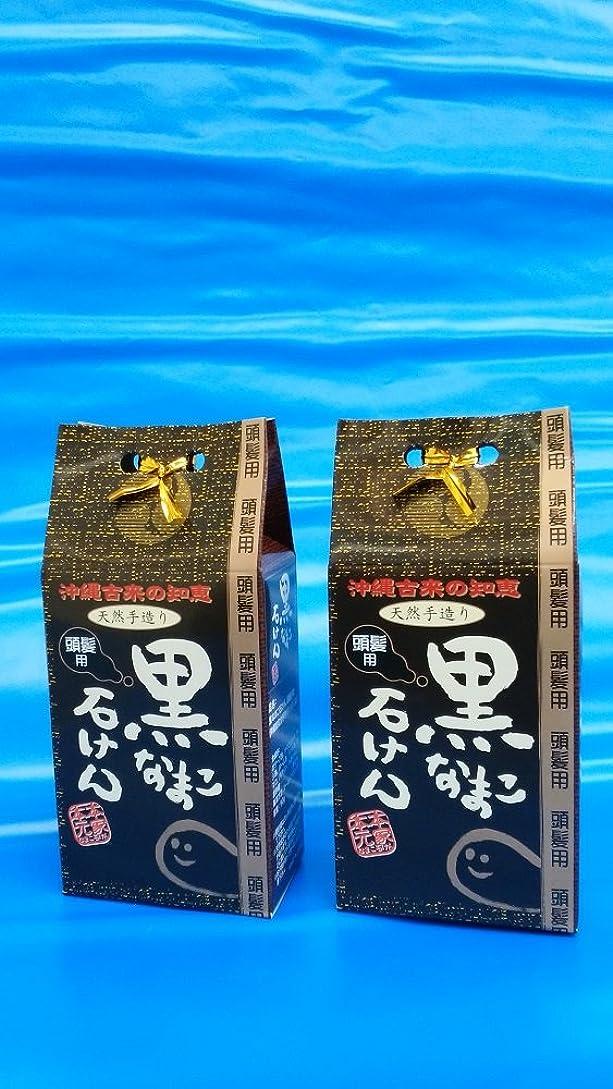 コスト哀ハイライトコラーゲンたっぷり! 沖縄 海生堂?黒なまこ石けん(頭髪用シャンプー)(無添加、手作り90g)の2セット
