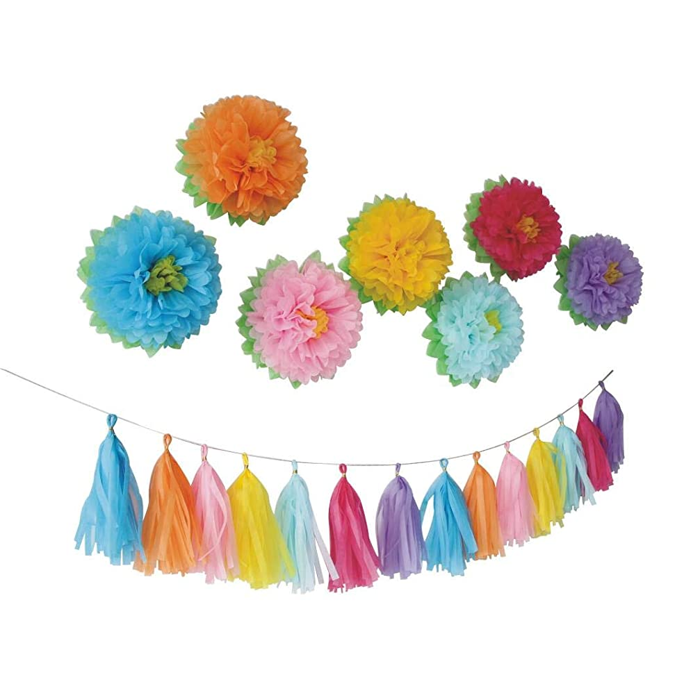 Mybbshower Rainbow Paper Pom Poms and Tassel Garland Birthday Party Set Baby Shower Photo Booth Backdrop Pack of 21
