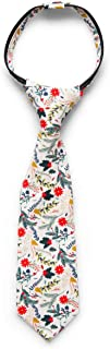 Littlest Prince Matching Bow Tie, Zipper Tie, and Standard Tie for Infants, Toddlers, Youth & Men (C)