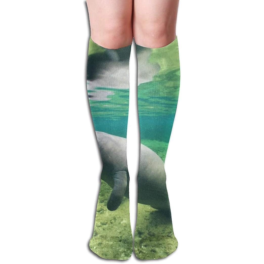 バタフライ要求宇宙のブルースプリングスマナティー 長い靴下を実行しているユニセックスニーハイソックススポーツアスレチックスクール
