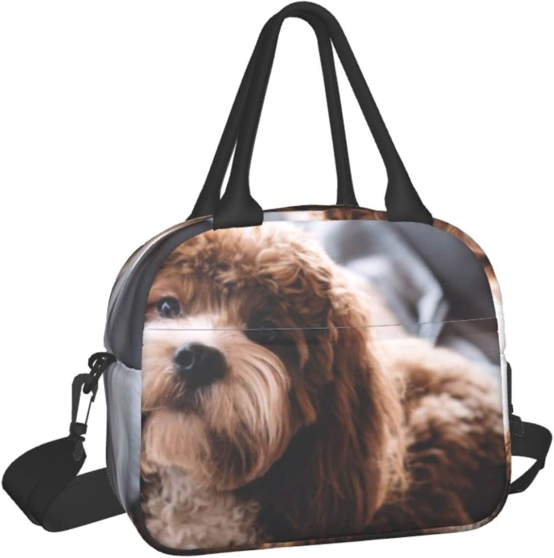 Pet Dog Print Hand-Held Financial sales Popular popular sale Table Portable Meal Lunch Contai Bag