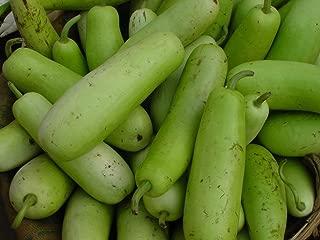 Best bottle gourd plant Reviews