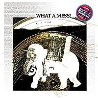 What a Mess!.. -Ltd- [Analog]