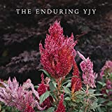 The Enduring YJY