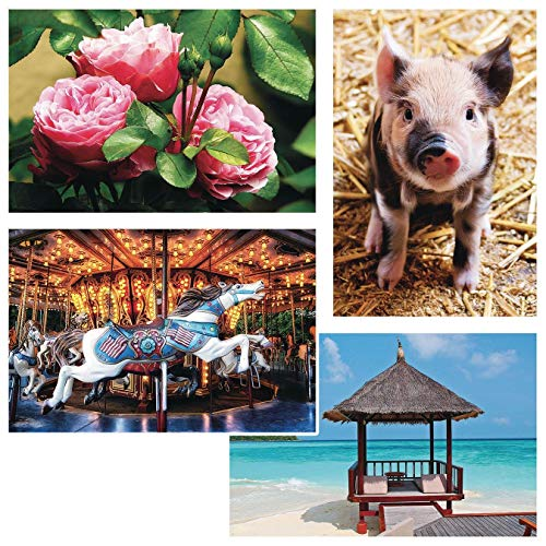 Thera-Jigsaw Foam Puzzles Set: Carousel Horse, Piglet, Pink Roses, and Beach Hut (Set of 4)