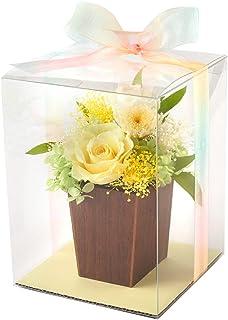 FUN fun プリザーブドフラワー にじはな 虹花 ミニ プレゼント ケース & 虹色リボンつき (イエロー)