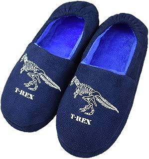 Kids Big Boys Warm Slippers with Soft Memory Foam Indoor Anti-Slip Cute Dinosaur Slippers