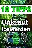 Unkraut entfernen,Top 10 Tipps, Den Garten von Unkraut befreien : Unkraut entfernen - Diese 10 Möglichkeiten gibt es