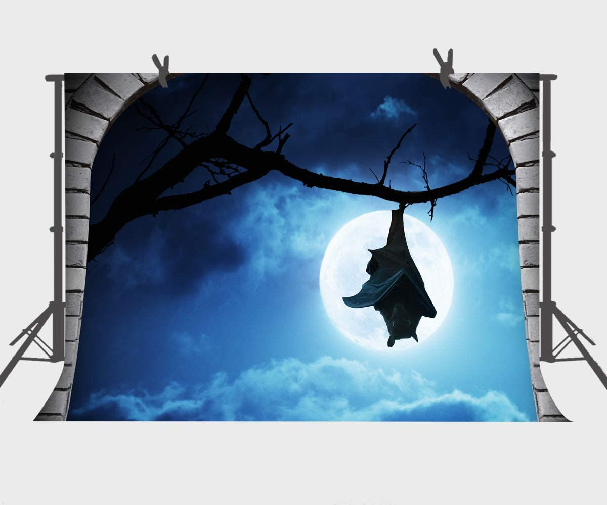 10x6.5ft Halloween Party Background Grim Reaper Photos Backdrop Photography Props DSFU127