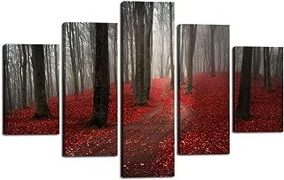 beautiful forest nature scenes