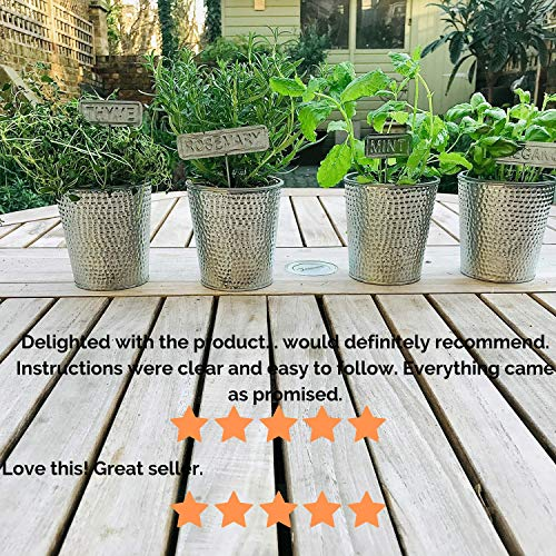 Indoor-Herb-Garden-Kit-Complete-Herb-Growing-Kit-to-Easily-Grow-Your-Own-Herbs–with-Stylish-Metal-Herb-Pots-and-Markers-All-You-Need-for-a-Lovely-Indoor-Garden-Herb-Planter-to-Grow-Fresh-Herbs