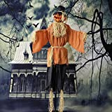 Haunted Hill Farm HHPUM-1FLSA 6-Ft. Animated Scarecrow Prop w/Rotating Jack-O-Lantern Head Indoor/Outdoor Halloween Decoration, Color 2