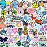 EL Nido Stickers for Water Bottles, 70pcs Sticker Packs, Cute Aesthetic VSCO Vinyl Stickers, Phone Laptop Computer Skateboard Stickers, Water Bottle Stickers, Waterproof Stickers for Teens Kids Girls