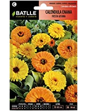 Semillas de Flores - Caléndula enana Fiesta Gitana variada - Batlle