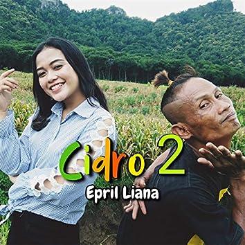Cidro 2