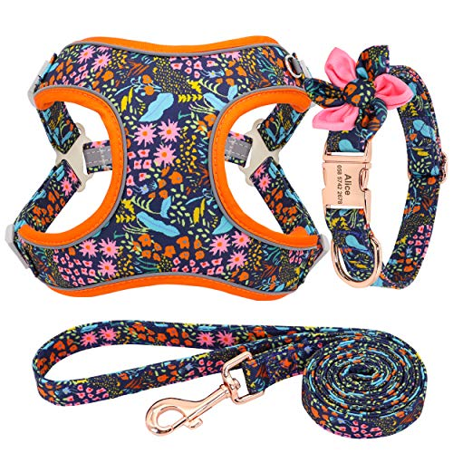Forestpaw Multi-Colored Dog Harness and Leash Set,Step in Reflective Vest Harness, Personalized Dog Collar and Harness for Small,Medium,Large,Orange,M
