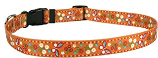 Yellow Dog Design Pet Collar, Standard Easy-Snap Collar, Spring Friends Collection, All-Sizes
