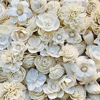 luv sola flowers