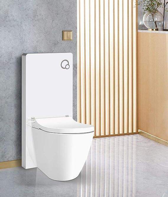Betätigungsplatte Schwarz glas inkl Sanitärmodul für Stand WC Weiß