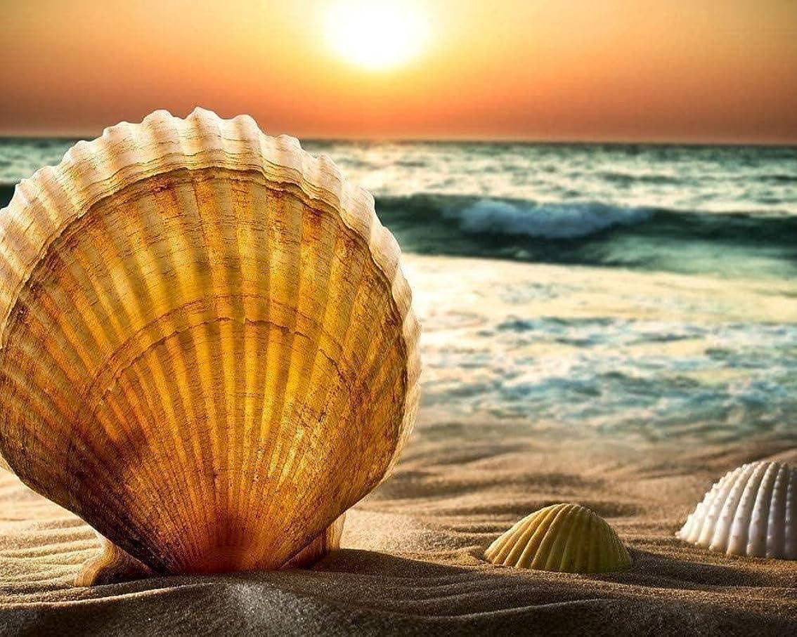 有効な遡る船員数字で設定した油絵ペイントキット貝殻と砂の写真の正方形は、ストレスを減らし、達成感を得るのに役立ちます40X50cm Diyの絵