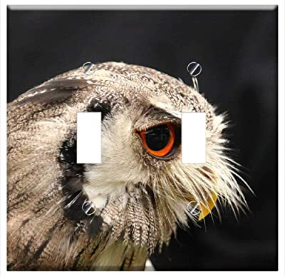 3dRose lsp/_95801/_2 USA Northwest Trek Snowy owl US48 JME0424 John /& Lisa Merrill Double Toggle Switch Washington