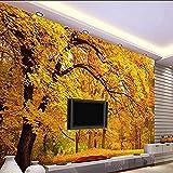 Papel tapiz fotográfico Otoño Dorado Dorado Piso de Montreal Otoño TV Sofá Sala de estar Mural de fondo papel pintado pared dormitorio de estar sala de estar fondo No tejido-350cm×256cm