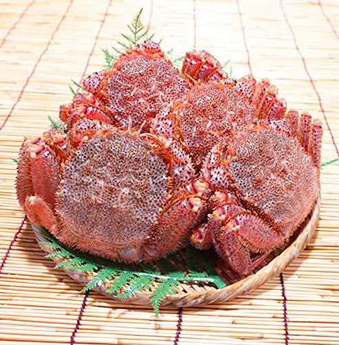 かにのマルマサ 北海道産 訳あり 活毛蟹 1.5kg詰(2〜5尾入) 冷蔵品