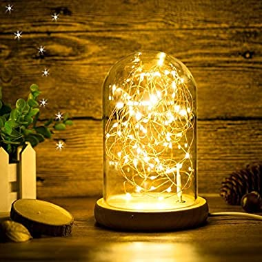 Glass Dome Bedside Table Lamp Bell Jar Display Dome Bamboo Base String USB LED Decorative Lamp with LED Warm Fairy Starry String Lights ideal for Decoration Anywhere By Erosom.(Warm White)