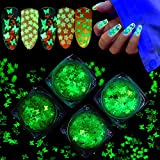 Luminous Butterfly Nail Art Glitters Sequins, Christmas Snowflake, Star Nail Glitter Stickers Glow in dark for Nail Decoration Accessories, Art Craft, Resin Making