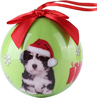 CueCue Pet CUECUEPET Christmas Winter Themed Decoration Shatterproof Memorial Ball with Top Bow Holiday Ornament, One Size, Havanese Puppy - Green
