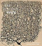 The Beautiful Brain: The Drawings of Santiago Ramon y Cajal...