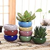 Ganeep 8 Unids/lote Ice-Crack Macetas de Cerámica para Plantas Jugosas Pequeño Bonsai Pot Hogar y Jardín Decoración Mini Macetas de Plantas Suculentas