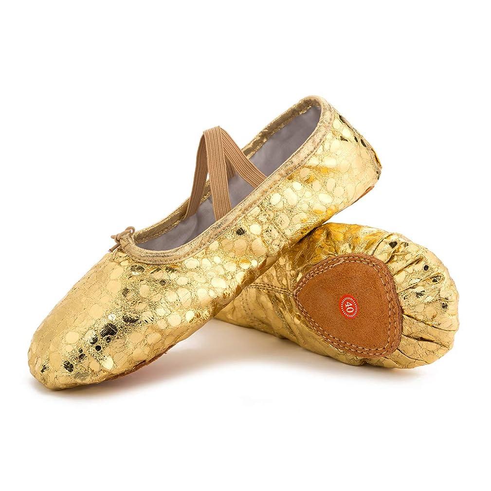 性格首尾一貫した元気[L-RUNJP] バレエシューズ バレエ靴 キャンバス製 ダンスシューズ 布製 シューズ バレエ ダンス用品 チアリーディング 伸びやすい