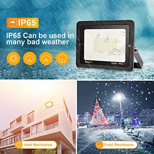 100W LED Foco Exterior Alto Brillo Proyector Led Impermeable IP65 Blanco Frío 6000K Floodlight Led Foco Exterior Iluminación para Patio, Camino, Jardín, Almacén [Clase de Eficiencia Energética A++]