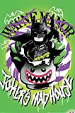 LEGO 1art1 The Batman Movie Poster - Joker's Madhouse (36 x 24 Inches)