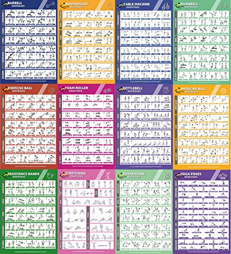 AIH Guida Palestra, Sport, Esercizio in Casa-Fitness - Manubri - Fasce/Elastici/Bande Elastiche di Resistenza, TRX -Yoga. Poster,Tabelle, Routine by Profit