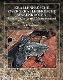 Krallenfrösche, Zwergkrallenfrösche und Wabenkröten: Pipidae in...