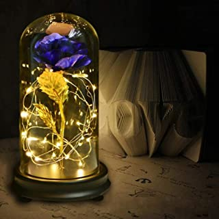 NOMSOCR Gold-Plated Red Artificial Silk Rose and LED String Light with Fallen Petals in Glass Dome for Wedding Anniversary Birthday Party (Deep Blue)